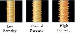 hair-porosity1